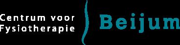 fysiotherapeut groningen logo